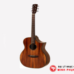 Đàn Guitar Hex Acoustic FX240C