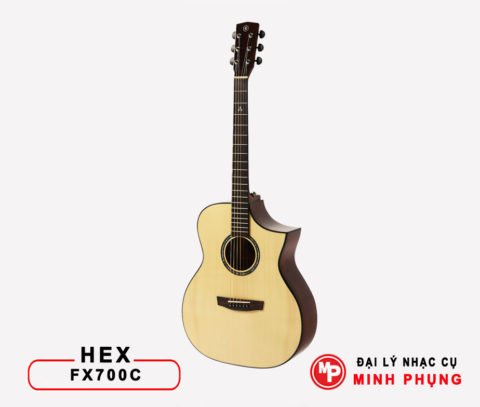Đàn Guitar Hex Acoustic FX700C